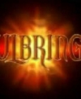 Soulbringer Steam Key