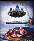 Pillars of Eternity - The White March Expansion Pass Steam Key