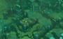 Battle Chasers: Nightwar PC Digital screenshot 3