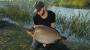 Euro Fishing: Ultimate Edition Steam Key screenshot 2
