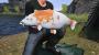 Euro Fishing: Ultimate Edition Steam Key screenshot 3